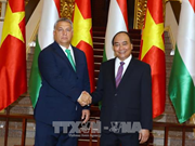 Vietnamese, Hungarian PMs affirm valuing ties during talks