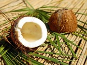 Indonesia earns nearly 900 million USD from coconut exports