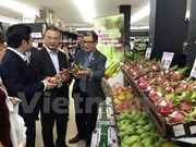 """Vietnamese Dragon Fruit Day"" goes vibrant in Australia"