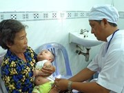 Can Tho steps up measures to prevent dengue fever