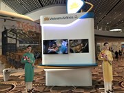 Vietnam Airlines to move operations to T4 at Changi Airport