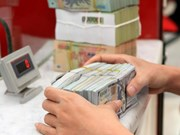 Foreign exchange reserves hit record 45 billion USD