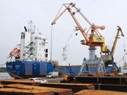 Vietnam's exports to Algeria grow 17 percent in nine months