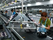 Workshop promotes Vietnam-South Africa investment