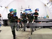 UN commits to supporting Vietnam in peacekeeping activities