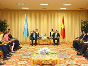 Vietnam highlights UN's central role: PM