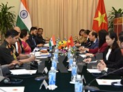 Vietnam, India hold 9th political consultation, 6th strategic dialogue