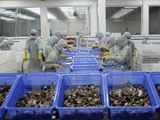 Vietnam aquaculture export and forum opens in Can Tho