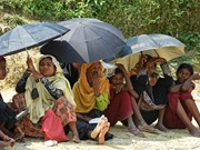 Canada establishes relief fund to support Myanmar