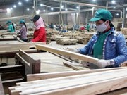 Vietnam earns 6.15 billion USD from wood exports