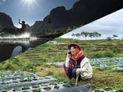 APEC 2017 Photo Contest winners announced