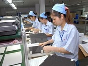 Dong Nai exceeds 2017 target in FDI attraction