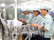 Ha Nam lures investment in industrial parks