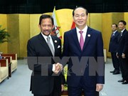 APEC 2017: President Tran Dai Quang welcomes Brunei's Sultan