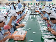 VN-RoK business forum aims to boost trade, investment