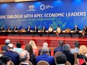 APEC 2017: The Diplomat lauds Vietnam's economic integration