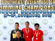 Vietnam triumphs at SEA age group swimming champs