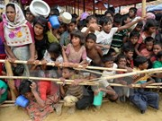 Myanmar, Bangladesh accept solution to Rohingya crisis