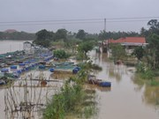 Hue hit by fifth flood in just a month