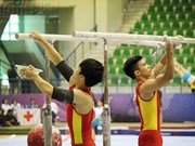 National gymnastics champs start in Hanoi