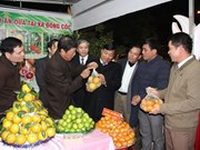 Festival promotes Bac Giang fruit industry
