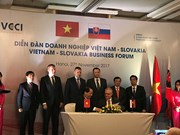 Vietnam, Slovakia promote economic cooperation