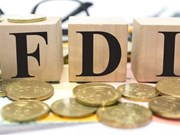 FDI reaches 33 billion USD at November's end