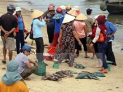 PM directs stockpiled seafood settlement