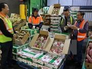 Fruits, vegetables export reach 3.16 billion USD in 11 months