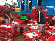 Ministry takes actions in response to EU's warning of IUU fishing