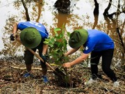 WWF, Intel continue wetland reforestation project in Long An