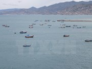 Ca Mau moves to fight illegal fishing off foreign waters