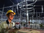 EVN reports 8-percent rise in 11-month electricity output