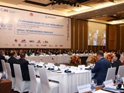 Vietnam Business Forum convenes year-end session