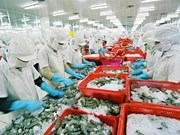 Seafood export turnover expected to hit 8.3 billion USD