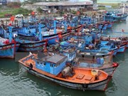 Quang Ngai asked to roll out measures to end illegal fishing