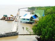 Experts seek to enhance water security in Mekong Delta
