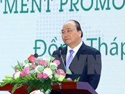 Dong Thap – bright star in investment environment: PM