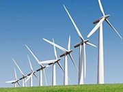 Ben Tre approves Nexif Energy's wind power project