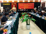 Irish Government supports Vietnam's ethnic minority area development