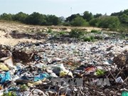 Untreated waste pollutes environmentin Vinh Phuc