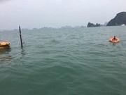 Quang Ninh: ship sinks, all 31 Chinese tourists saved