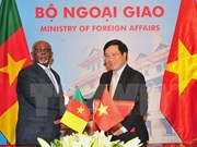 Cameroon keen on broadening affiliation with Vietnam