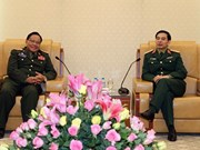 Vietnamese, Lao air forces intensify cooperation