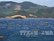 Xuan Dai Bay targets 1.2 million visitors in 2030