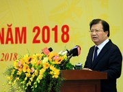 EVN aims to raise Vietnam's ranking in electricity access index