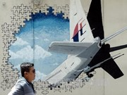 US firm to receive up to 70 mln USD if finding missing MH370
