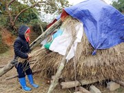 Cold weather hits northern provinces
