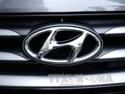 Hyundai considers plant in Vietnam or Indonesia