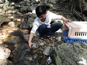 27 wild animals returned to the wild in Kon Tum